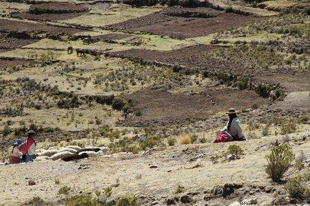 Bolivie1 Titicaca (114)