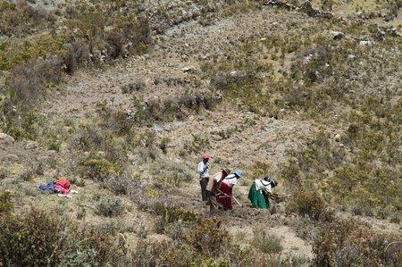 Bolivie1 Titicaca (72)