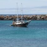 Lundi 20 au  mardi 28 septembre : Les îles Galápagos