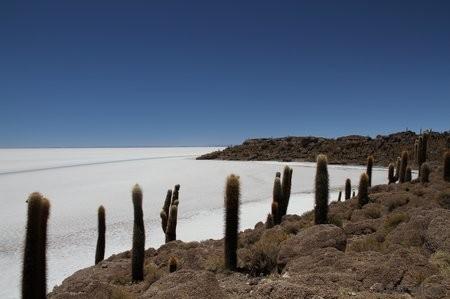 Bolivie3 Uyuni (276)