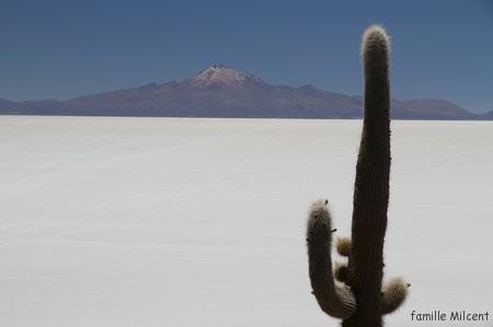 Bolivie3 Uyuni (280)