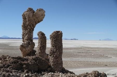 Bolivie3 Uyuni (392)