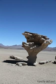Bolivie3 Uyuni (597)