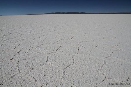 Bolivie3 Uyuni (78)
