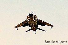 Argentine guerre des malouines 4-Sea Harrier