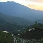 Les rizières en terrasses de Lóngjĭ