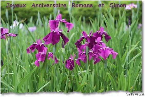 iris bon anniversaire