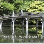 MERCI !    THANK YOU !     MUCHAS GRACIAS !   -ARIGATO !